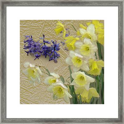 Golden Spring Framed Print by Steve Karol