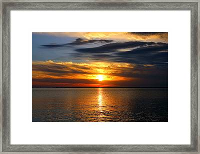 Golden Sun Framed Print by Faith Williams