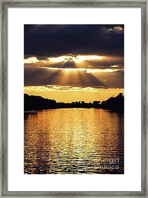 Golden Sunrays Framed Print by Elena Elisseeva