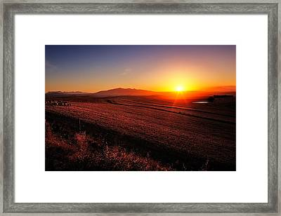 Golden Sunrise Over Farmland Framed Print by Johan Swanepoel