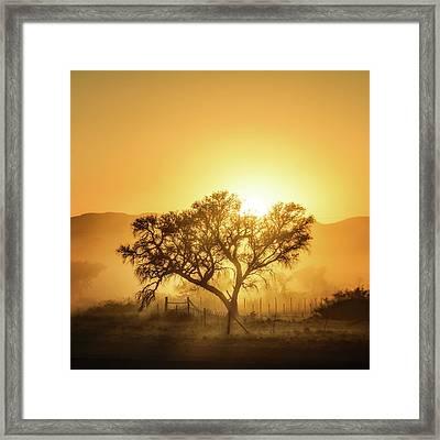 Golden Sunrise Framed Print by Piet Flour