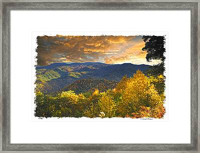 Golden Tipped Smokey's  Framed Print by Randall Branham