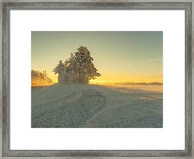Golden Winter Framed Print by Rose-Maries Pictures