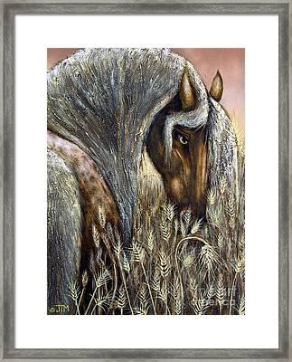 Golden Years Harvest Framed Print by Jonelle T McCoy