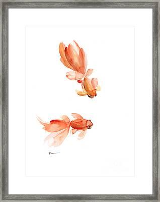 Goldfish Art Print Watercolor Painting Framed Print by Joanna Szmerdt