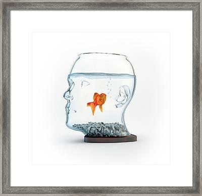 Goldfish In A Bowl Framed Print by Andrzej Wojcicki