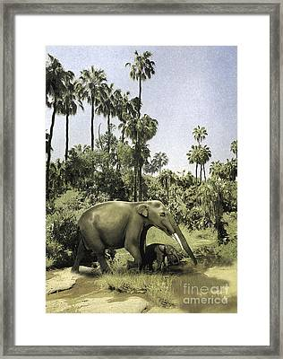 Gomphotherium Guiding Its Offspring Framed Print by Jan Sovak