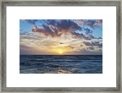 Gone With The Sun Framed Print by Nick Barkworth