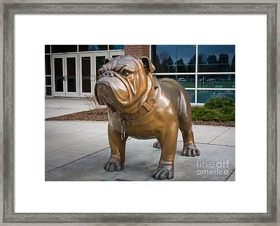 Gonzaga Bulldog Framed Print by Inge Johnsson