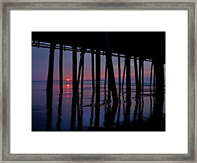 Good Morning Old Orchard Silhouette   Framed Print by Betsy C Knapp