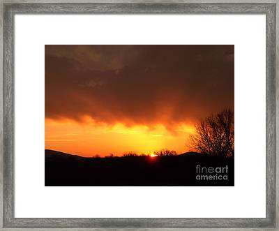 Good Morning Framed Print by R McLellan