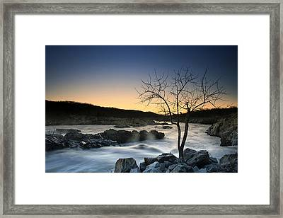 Good Morning Sunshine Framed Print by Edward Kreis
