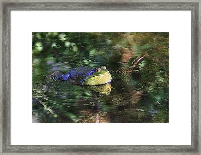 Good Vibrations Framed Print by Donna Kennedy