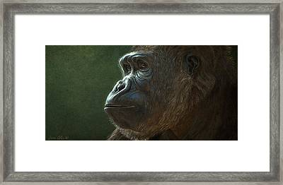 Gorilla Framed Print by Aaron Blaise
