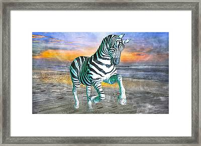 Got My Stripes Framed Print by Betsy C Knapp
