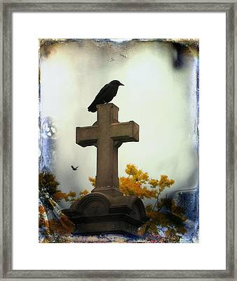 Gothic Corvidae Framed Print by Gothicolors Donna Snyder