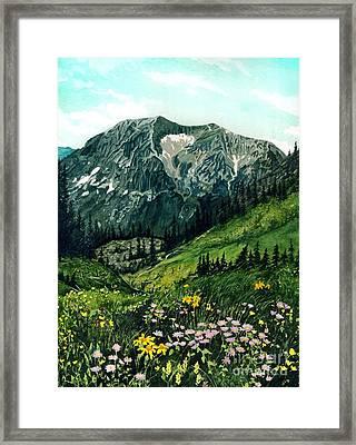 Gothic Grandeur Framed Print by Barbara Jewell