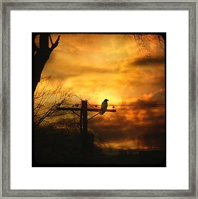 Gothic Sunset Framed Print by Gothicolors Donna Snyder