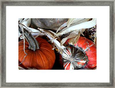 Gourd Geous George Framed Print by Laurette Escobar