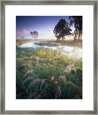 Grab Some Grass Framed Print by Ray Mathis