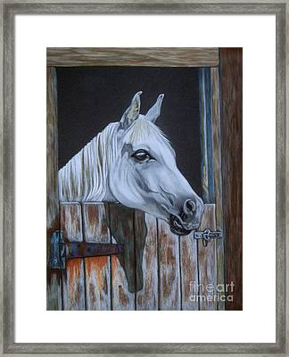 Grace At The Stable Door Framed Print by Yvonne Johnstone
