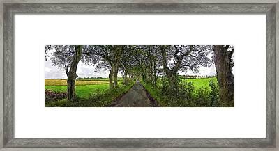 Gracehill Framed Print by Chris Butler
