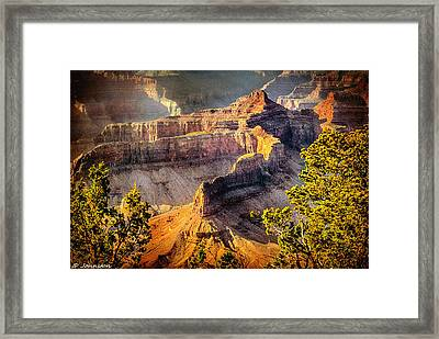 Grand Canyon National Park Framed Print by Bob and Nadine Johnston