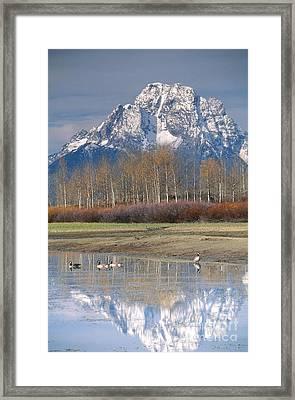Grand Tetons National Park Framed Print by Art Wolfe