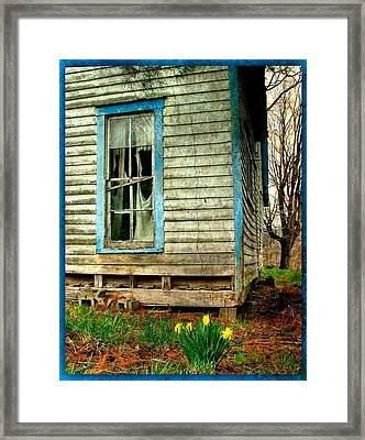 Grandma's Daffodyls Framed Print by Julie Dant