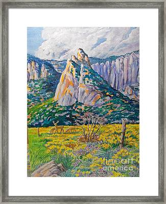 Granite Feature In Unaweep Framed Print by Annie Gibbons