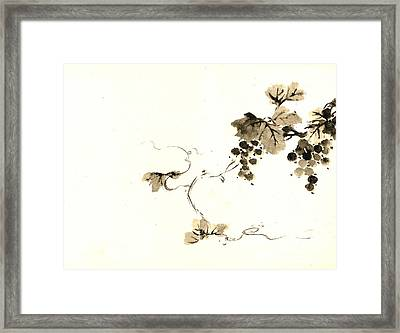 Grape Clusters 1800 Framed Print by Padre Art