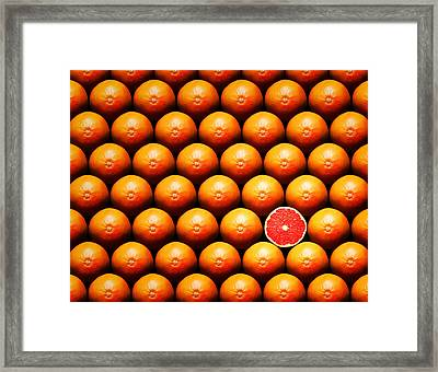 Grapefruit Slice Between Group Framed Print by Johan Swanepoel