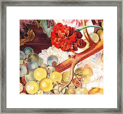 Grapes And Flowers From The Old Master Framed Print by Irina Sztukowski