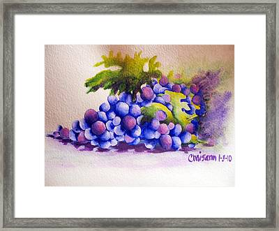 Grapes Framed Print by Chrisann Ellis