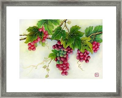 Grapes Framed Print by Hailey E Herrera