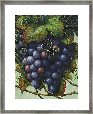 Grapes Framed Print by Lynn Bywaters