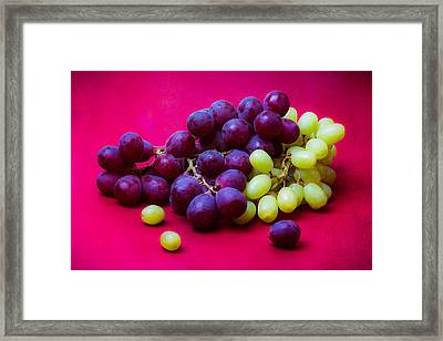 Grapes White And Red Framed Print by Alexander Senin