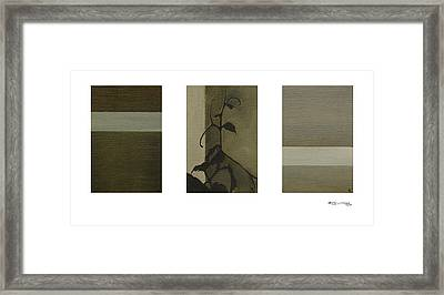 Grapevine Line Framed Print by Xoanxo Cespon