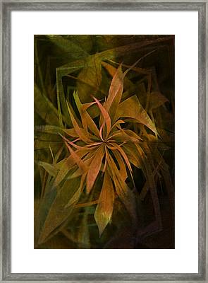 Grass Abstract - Earth Framed Print by Marianna Mills