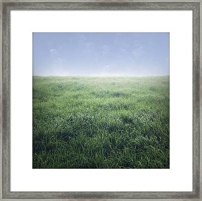 Grass And Sky  Framed Print by Les Cunliffe