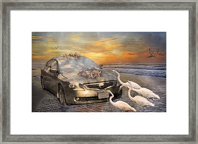 Grateful Friends Curious Egrets Framed Print by Betsy C Knapp