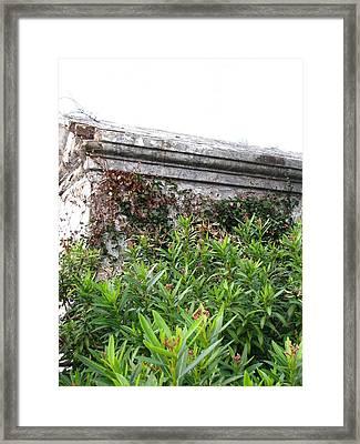 Grave Framed Print by Beth Vincent
