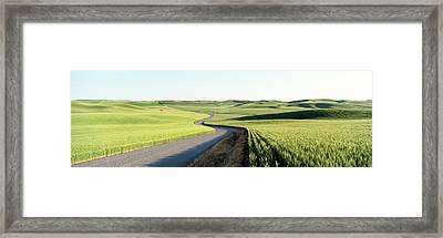 Gravel Road Through Barley And Wheat Framed Print by Panoramic Images