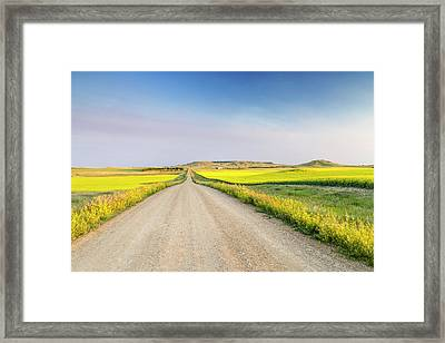 Gravel Road To West Rainy Butte Framed Print by Chuck Haney
