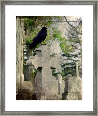 Graveyard Occupant Framed Print by Gothicolors Donna Snyder