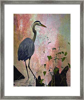 Great Blue Heron Among Cypress Knees Framed Print by J Larry Walker
