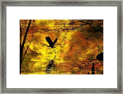 Great Blue Heron In Moment Of Suspense Framed Print by J Larry Walker
