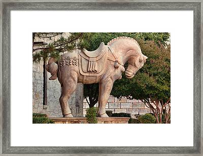 Great Chinese Horse Framed Print by Linda Phelps
