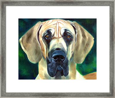 Great Dane Nobility Framed Print by Lyn Cook