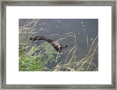 Great Falls Park - 121228 Framed Print by DC Photographer
